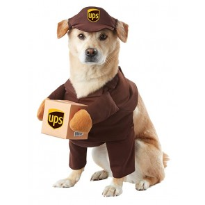 high quality dog halloween costumes near me