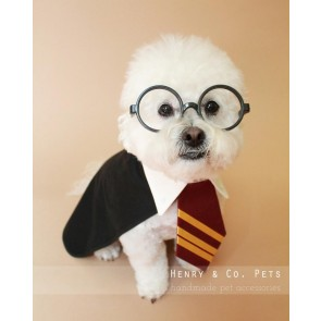 harry potter dog halloween costume
