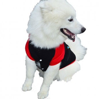 superman dog costume wholesale