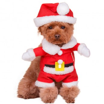 cheap dog halloween costumes online